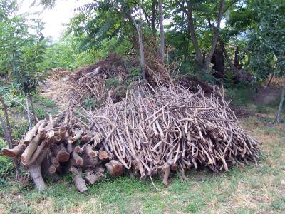 дърва, колци и клечки