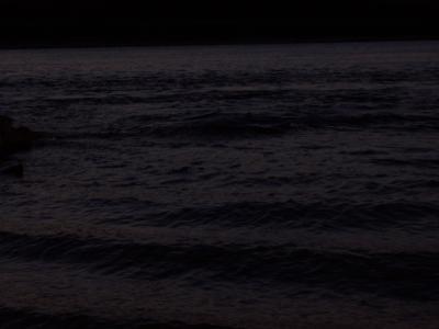 дунавски вълни