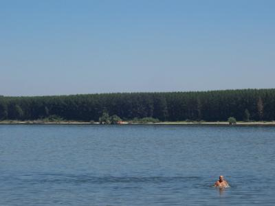 остров в Дунав срещу Цибър