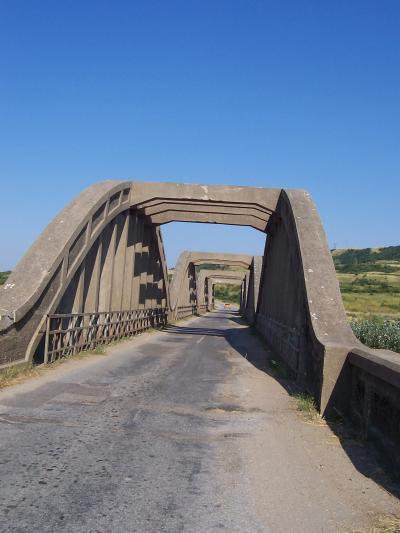 големия мост над цибрица