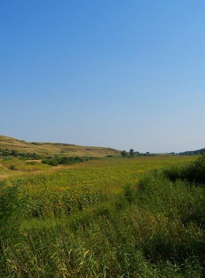 поле и хълм